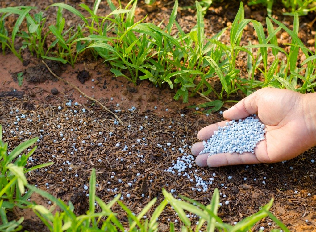 Wastewater as natural fertilizer