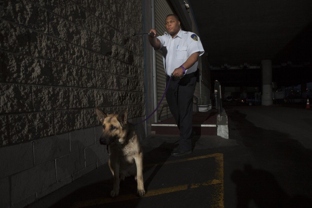 guard with k9 at night