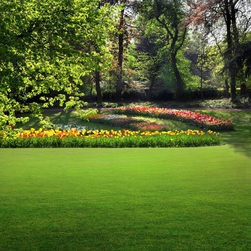 wide landscape garden