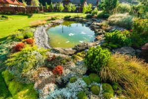 Pond in lawn